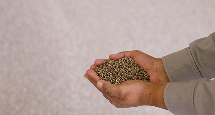 Fosfato é essencial para produção de pães, refrigerantes, chás, carnes processadas e laticínios